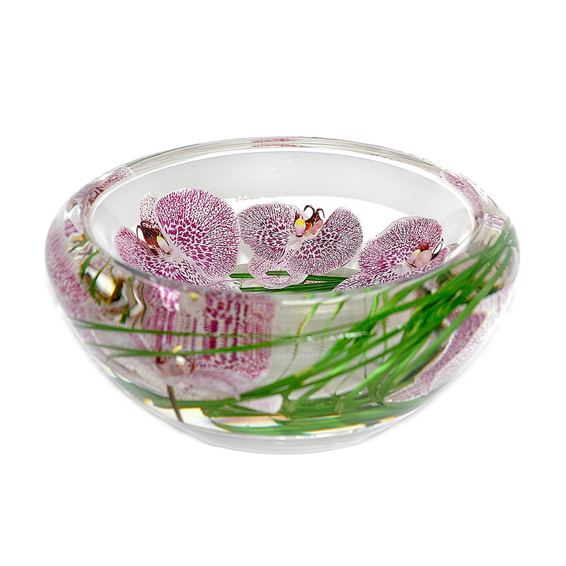 Spotted Phalaenopsis Flower Bowl