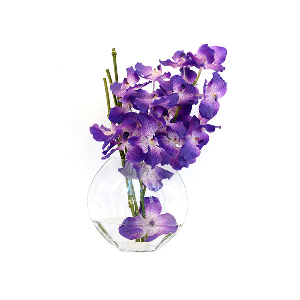 "Purple Vanda in 10"" Moon Vase"