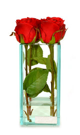 "Red Roses Glass Plate Vase 8""H"