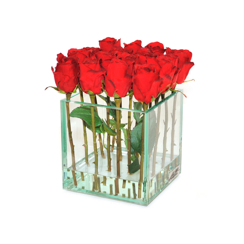 "Red Roses in Glass Plate Cube. 2 sizes (4"" & 6.5"" Cube)"