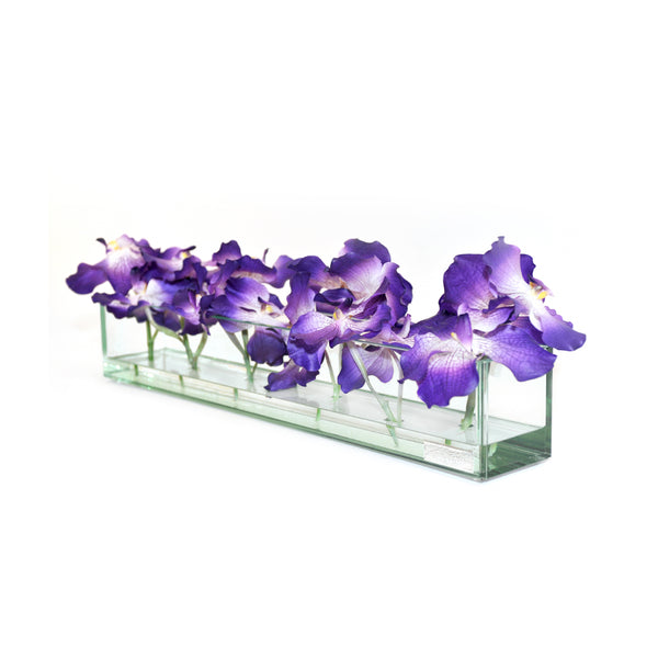 "Purple Vanda in Glass Plate Vase • 3 sizes (12"", 24"" & 48""L)"
