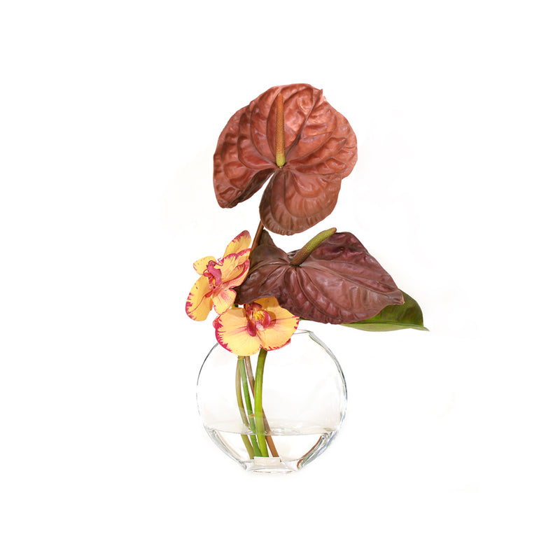 Orchid In Tropical Composition In Moon Vase