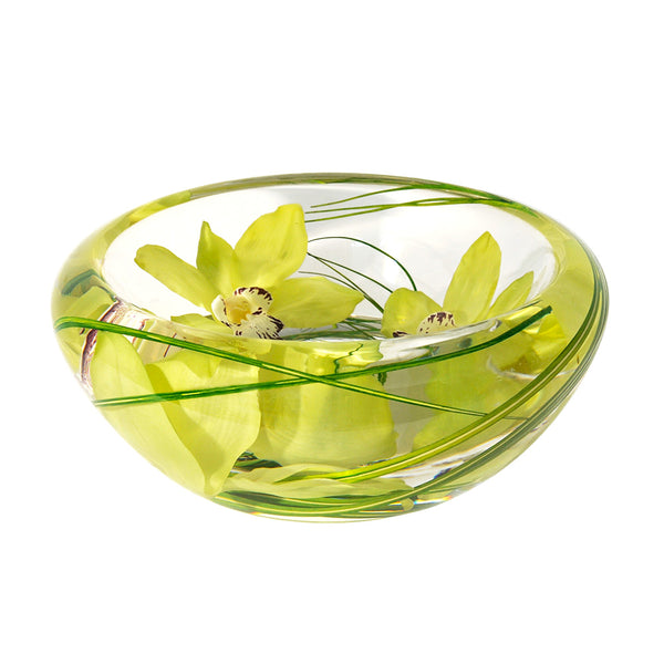 Green Cymbidium Flower Bowl