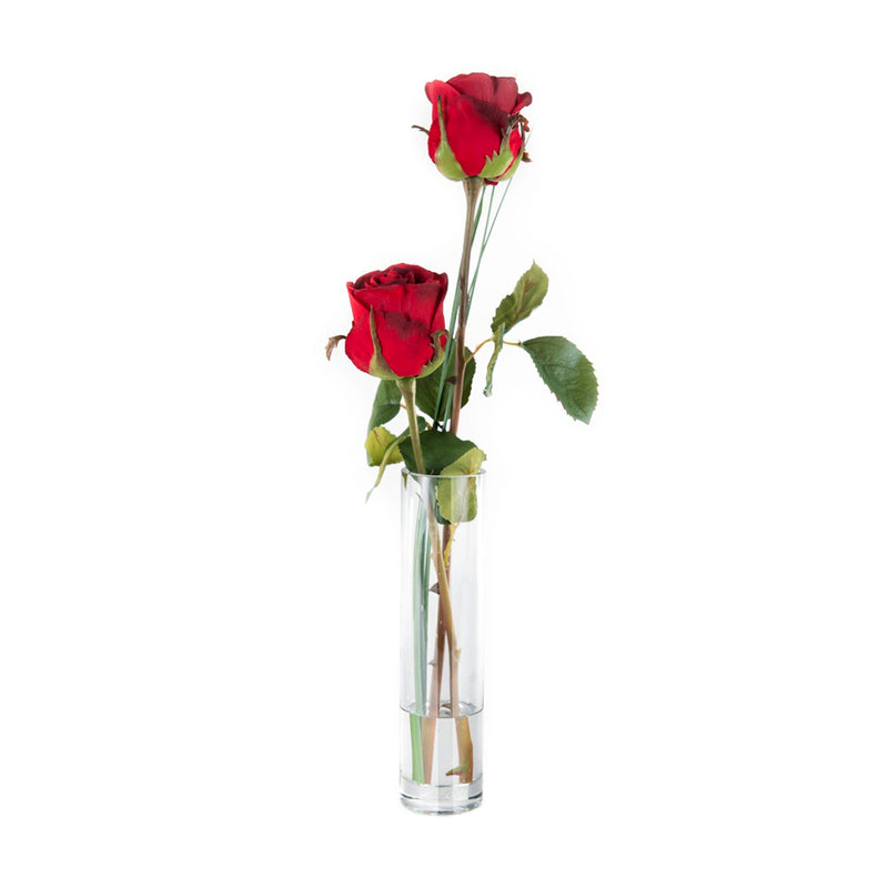 Red Rose in Bud Vase