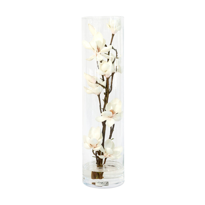 Champagne Magnolia Flowers in Tube Vase • 3 sizes