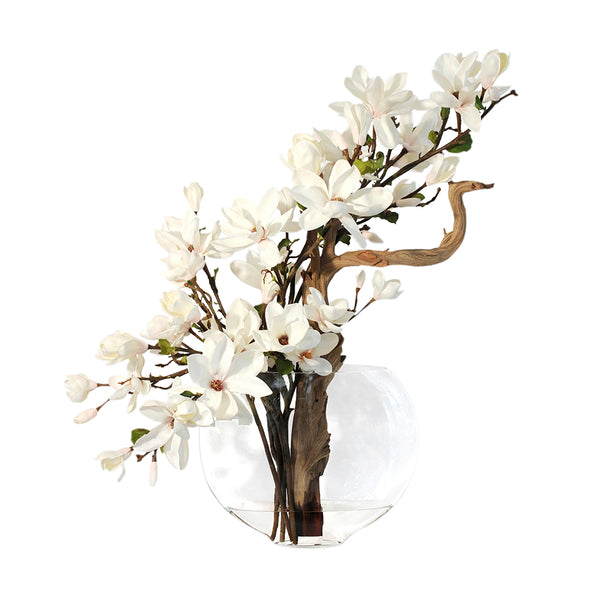 Champagne Magnolia & Wood in Moon Vase • 2 Sizes