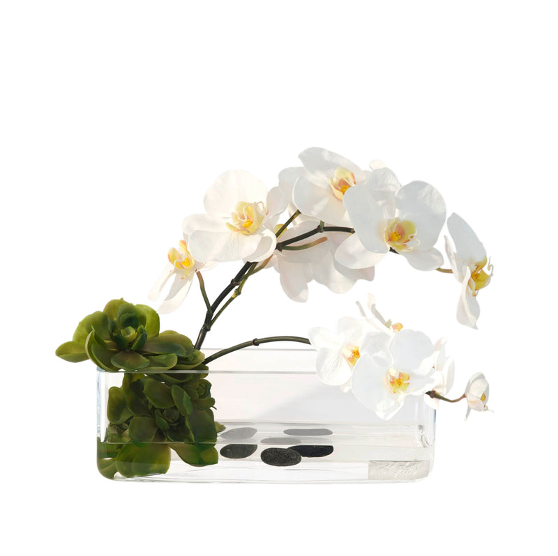 "White Phalaenopsis & Succulents 12"" Rectangle Vase"