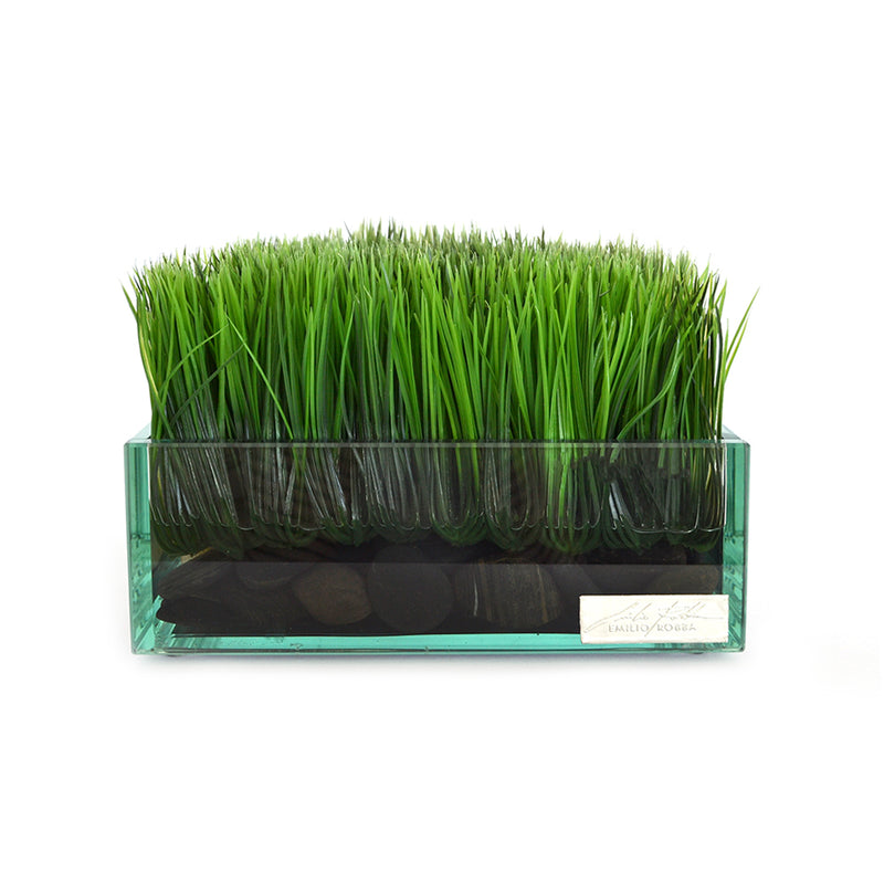 "Grass & Stones in 8"" Square Glass Plate Planter"