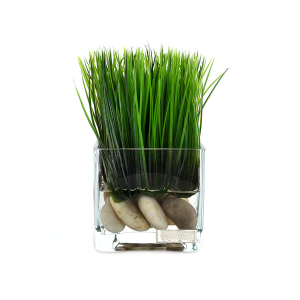 Grass & Stones in Square Vase