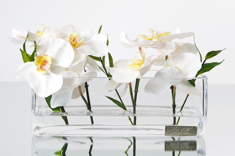 "White Phalaenopsis & Bamboo Leaves 12""L Rectangle Vase"