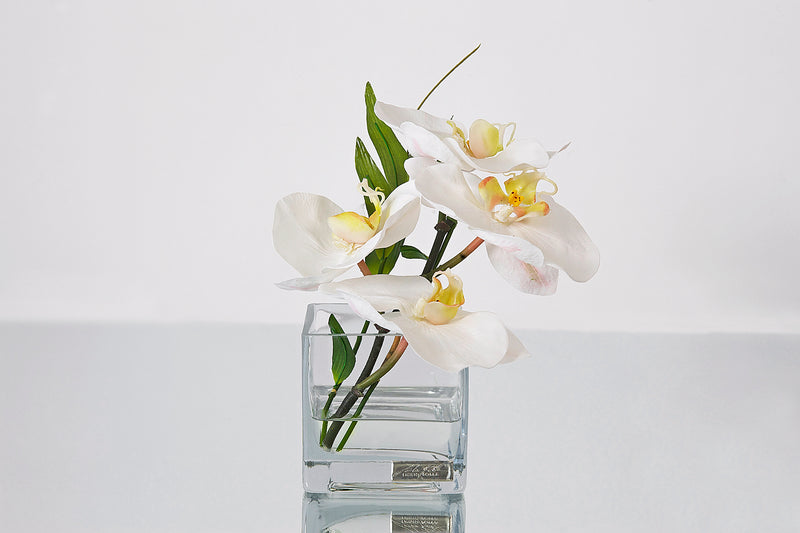 White Phalaenopsis & Bamboo Leaves Square Vase