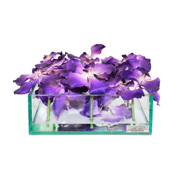 "Purple Vanda 12"" Square Plate Glass Planter"