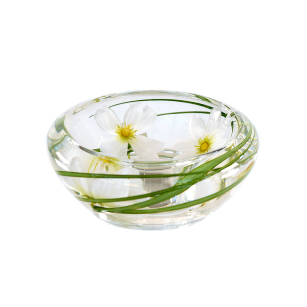 White Cosmos Flower Bowl