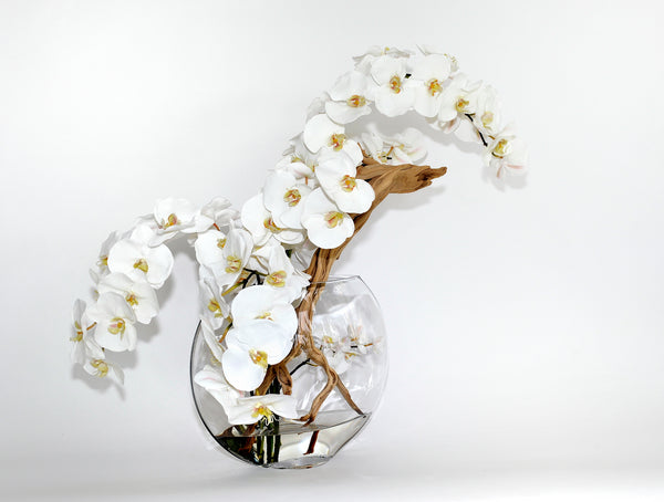 "White Phalaenopsis w/ Wood 13"" Moon Vase"