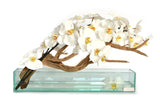 "White Phalaenopsis & Wood 24"" Plate Glass Planter"