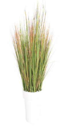 "Grass Reed 19""H Moxie Container"