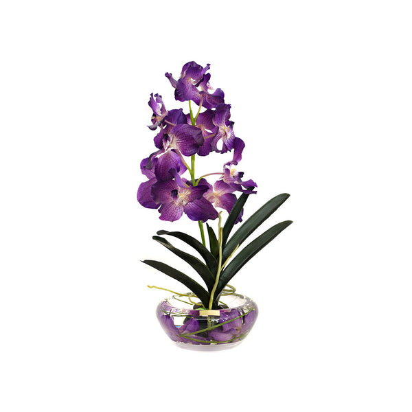 Purple Vanda Plant Bloom Bowl • 2 Sizes