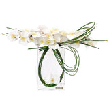 White Phalaenopsis & Bamboo in Rectangular Vase