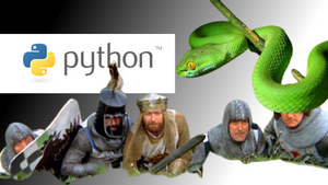 Why is everyone raving on about Python?