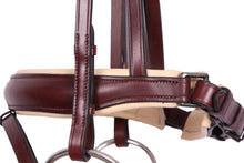Load image into Gallery viewer, Kingsley Snaffle Bridle Chestnut