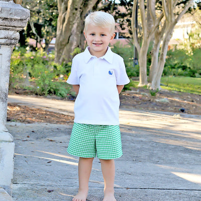 Embroidered Whale Boys Polo Short Set Green Check