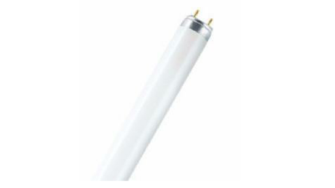 58W FLUORESCENT TUBE COL86 box of 25