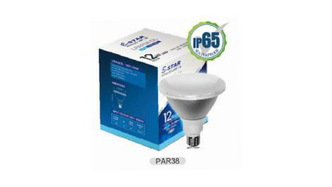 PAR38 LED FLOOD LAMP D/L 12W