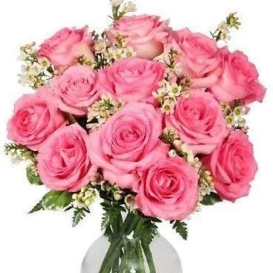 Perfectly Pink Dozen Roses