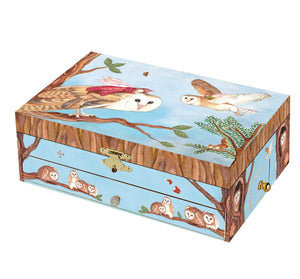 Owl Travellers music box closed view | Musical treasure boxes and decor for kids from Enchantmints | unusual gifts for owl lovers