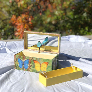 Butterfly music box open in sunshine view | Musical treasure boxes and decor for kids from Enchantmints | unusual gifts for girls