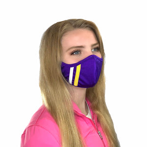 Team Stripe Face Mask
