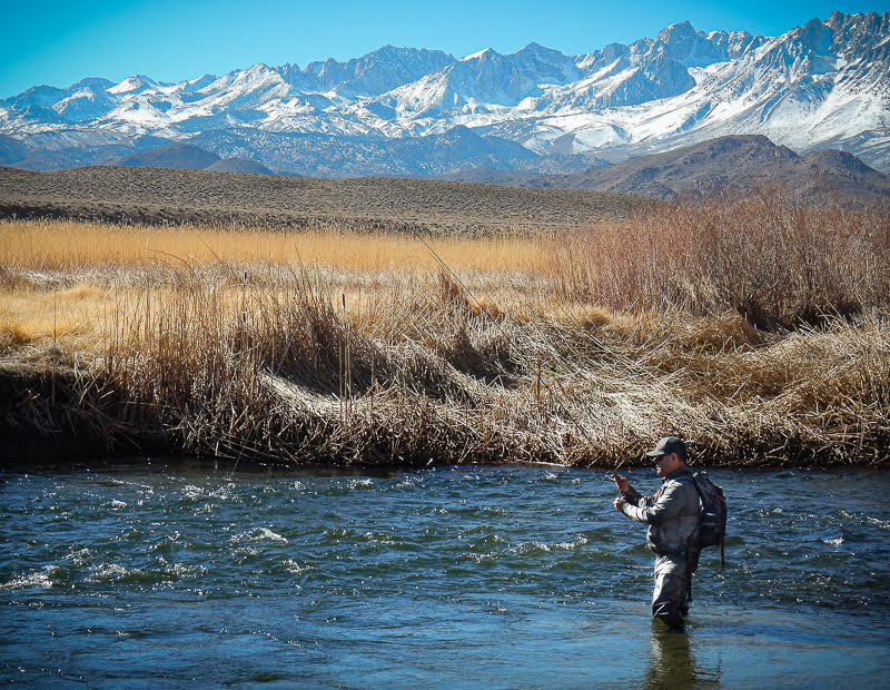 Eastern Sierra Fly Fishing Report