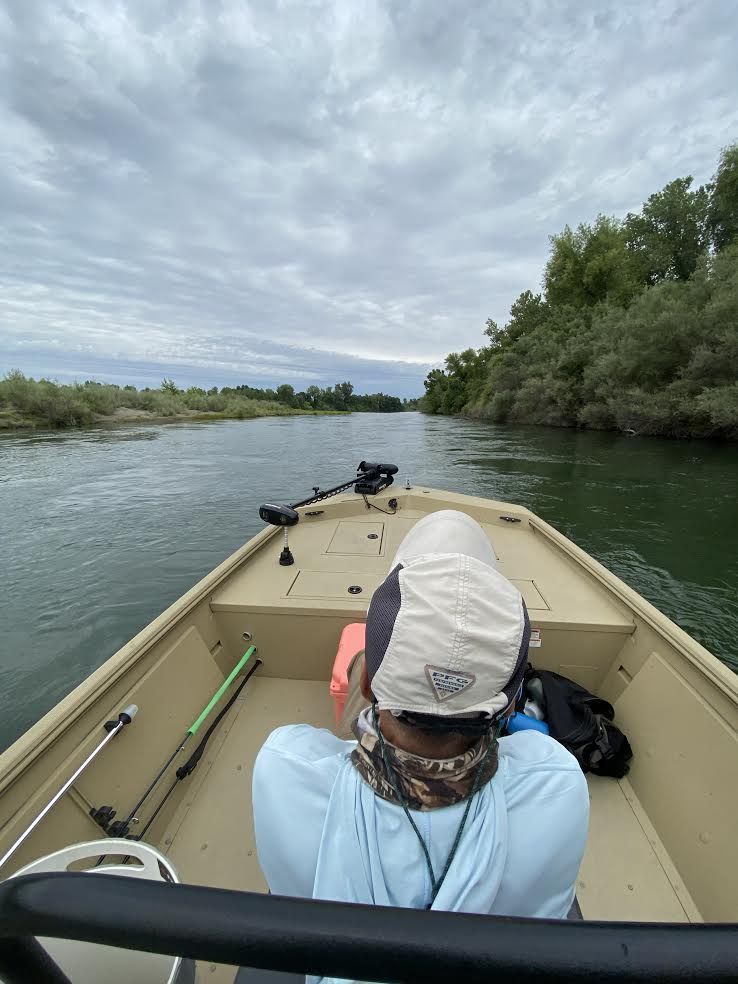 Central Valley Fly Fishing Report