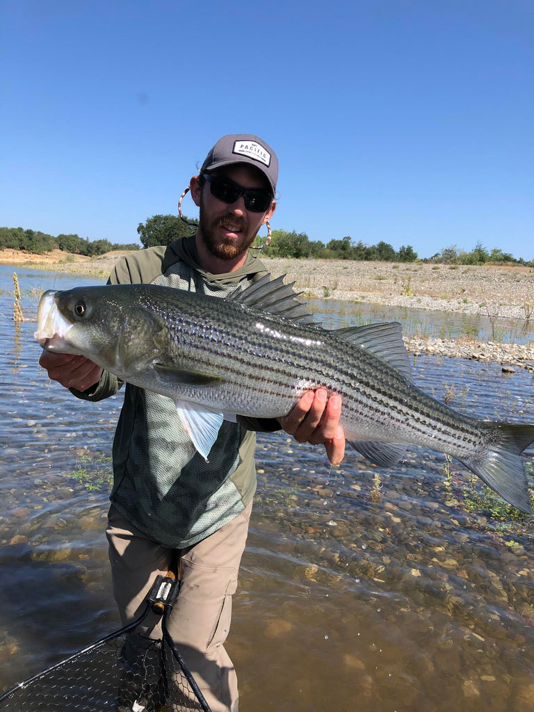 Lower American River Fly Fishing Report