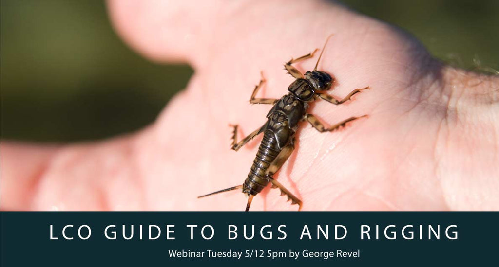LCO's Guide To Bugs & Rigging