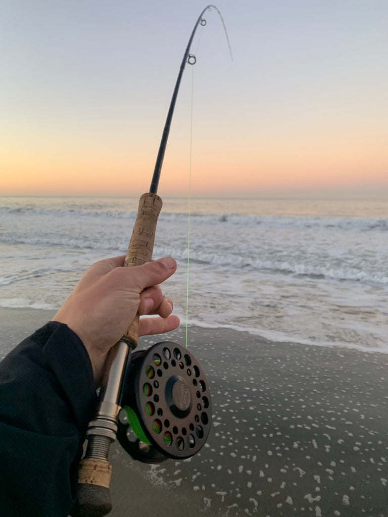 Local Surf Fly Fishing Report