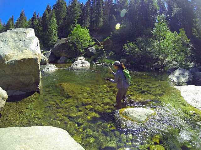 North Fork Yuba River Fly Fishing Report