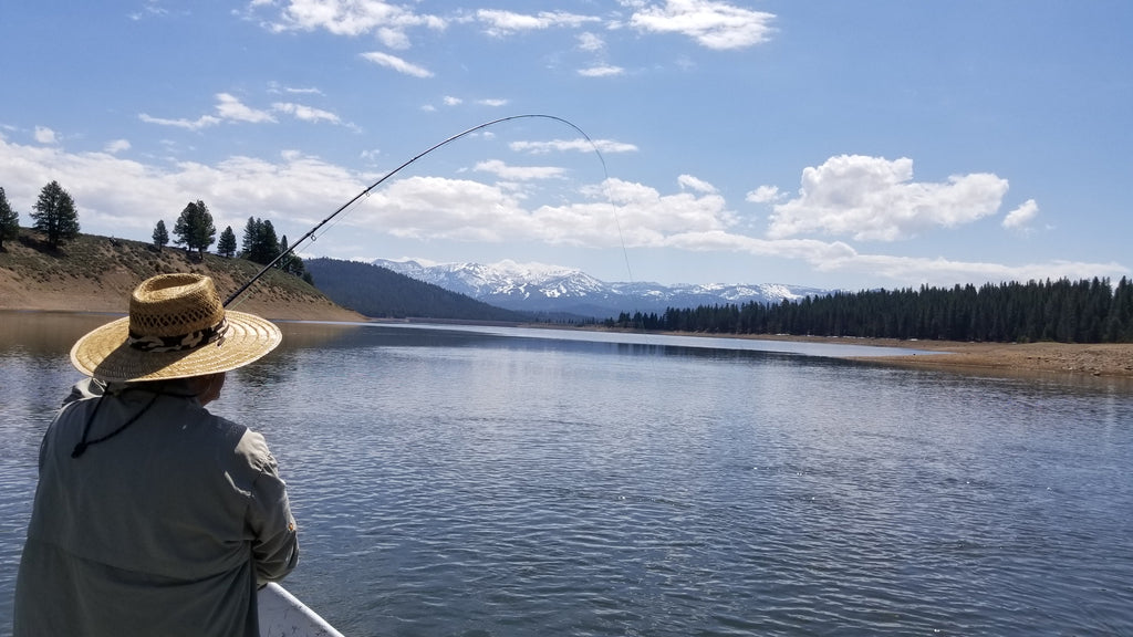 Northern Sierra Fly Fishing Report