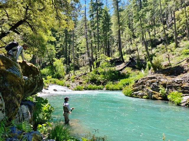 Northern California Fly Fishing Report