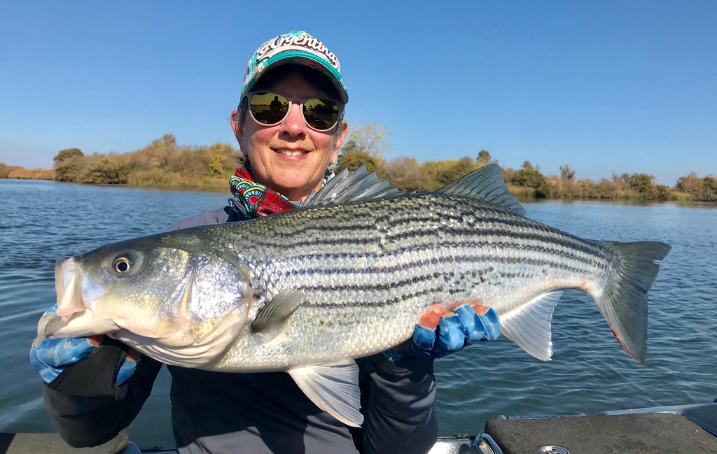 Delta Fly Fishing Report