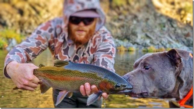 Rogue River, Klamath River, Upper Sacramento and McCloud River Fly Fishing Report