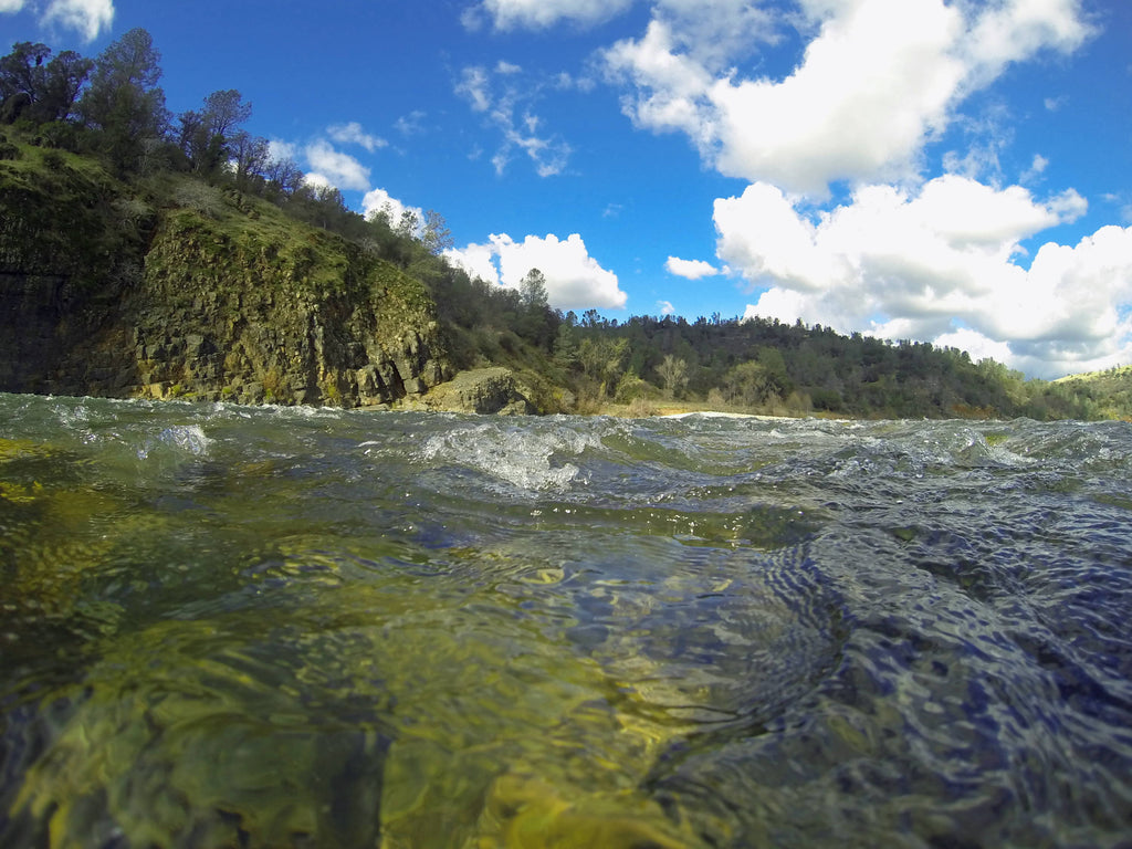 Lower Yuba Fly Fishing Report