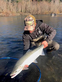 Coastal Steelhead Report