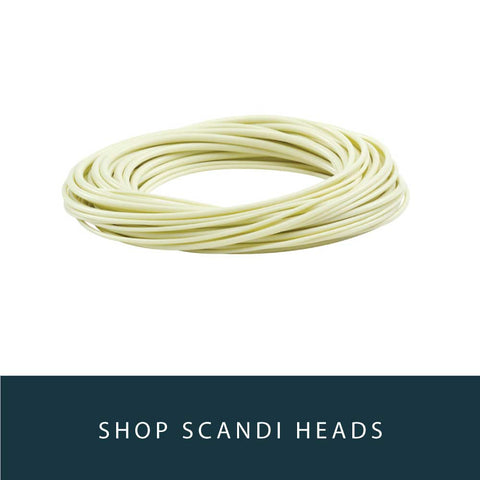 Spey Lines : Scandi Heads