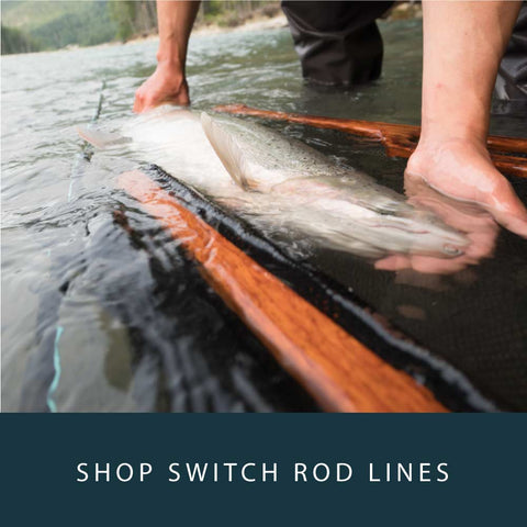 Spey Lines : Switch Lines