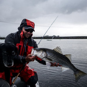 Striper Flies