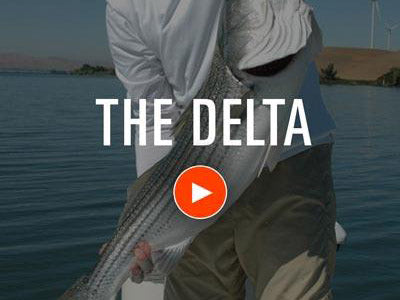 Delta Fly Fishing Video