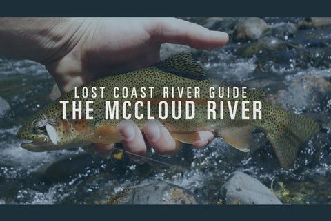 Fly Fishing the McCloud River