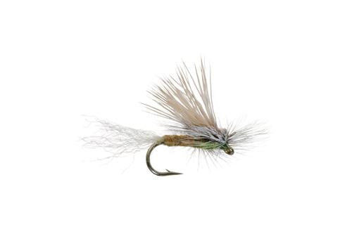 Cutter's E/C Caddis