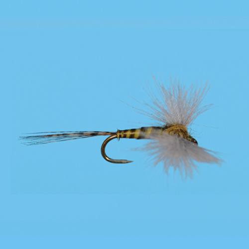 CDC BWO Spinner